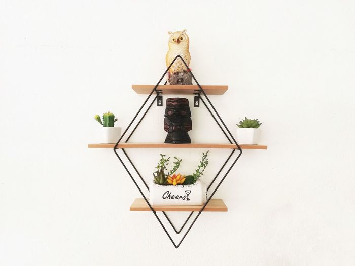 Rhombus shelf Attached to a white wall with flower pots and statues on the floor Growing Ladder Paint Roller Pollen Fragility Stem Prepared Food Stamen Bud Window Box Blooming In Bloom Flower Head Plant Life Petal Step Ladder Text Hanging Studio Shot White Background Indoors  No People Still Life Plant Copy Space Wood - Material Wall - Building Feature Creativity Nature Potted Plant Art And Craft Arrangement Craft High Angle View White Color Table Plant Part