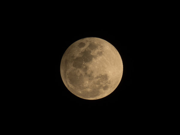 Moon Full Moon Nature Night Black Background No People Astronomy Tranquility Sky Beauty In Nature Moon Surface Outdoors Photoofthenight Naturephotography Photooftheday Beauty Photography Beauty In Nature Nature Clear Sky Amazing View Myfavourite Nature Photography Lieblingsteil