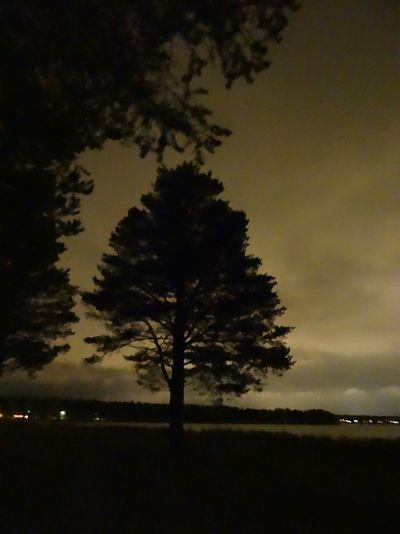 nightwiew in luleå. sweden Fresh Air Beautiful Darkness Taking Photos