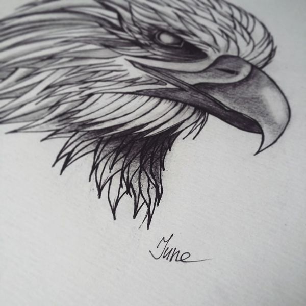 Art Drawing Eagle Art, Drawing, Creativity June Tattoopins Tattooart рисую In Progress