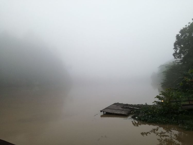Beauty In Nature Borneo Brunei Day Dramatic Landscape Fog Foggy Landscape Foggy Morning Hazy  Jungle Shoot Kinabatangan River Malaysia Mist Mountain Nature No People Outdoors River View Sabah Sky Sukau Weather Weather Photography Wildlife Photography Fog_collection