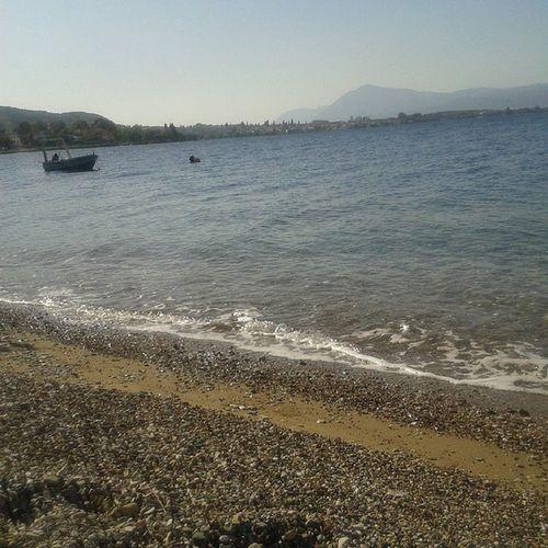 Summer Never Ends Rodini Patra