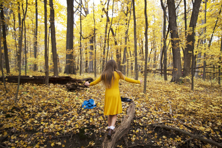 Rear view of person with yellow umbrella in forest