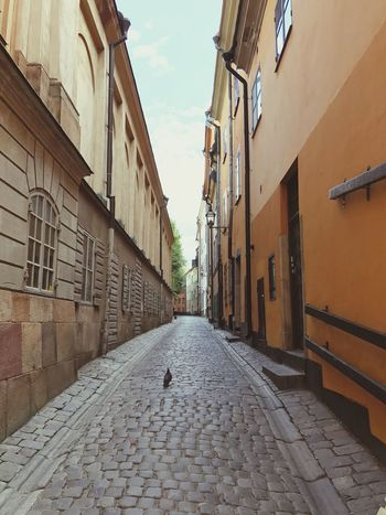 Sweden Stockholm Architecture Built Structure Building Exterior Building The Way Forward Direction Sky Diminishing Perspective Footpath Street City Alley Empty Outdoors Day Cobblestone