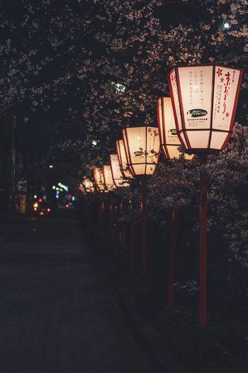 Illuminated lantern on footpath by street at night