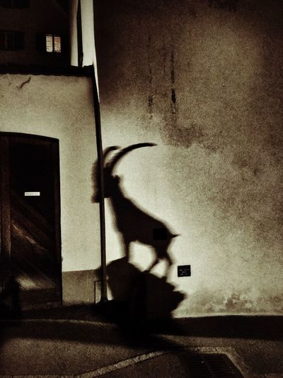 Spirit of ibex Light And Shadow Mountain Village Nocturnal Statue Ibex On A Rock Ibex Shadow Blurred Motion Night Dark Mystery