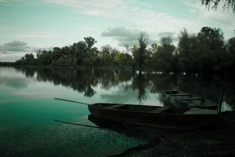 Hungarian_photographers Hungary Backwater EyeEmNewHere Tree Water Nautical Vessel Moored Lake Rowboat Reflection Oar Sunken Kayak Boat Fishing Boat