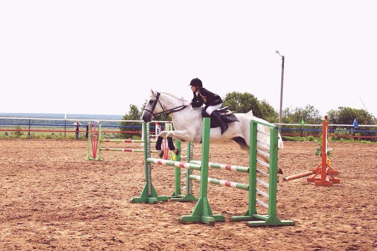 Дымок,Республика 2010 Horse