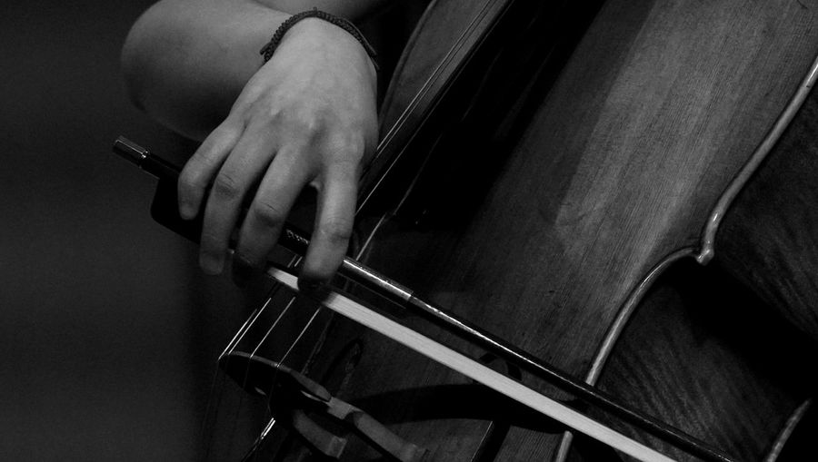 Midsection of person playing violin