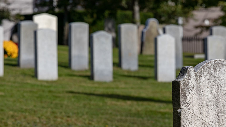 Military cemetery in Halifax Nova Scotia. Grave Cemetery Stone Memorial Tombstone Grass No People In A Row Plant Religion The Past Day History Nature Spirituality Sadness Outdoors Solid Stone Material Cemetery Military Headstones In A Row