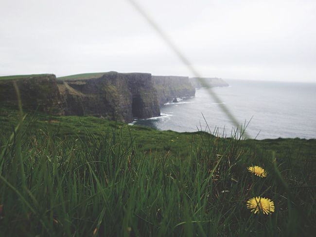 The Great Outdoors - 2015 EyeEm Awards Getting Inspired Feeling Thankful Nature EyeEm Nature Lover Cliffs Cliffs Of Moher  Learn & Shoot: Layering Edge Of The World Protecting Where We Play Q for Quest Landscapes With WhiteWall Ireland Luck Of The Irish The KIOMI Collection Focus Object The Secret Spaces Paint The Town Yellow