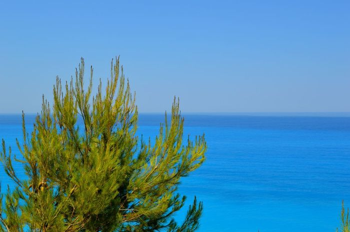 Beauty In Nature Blue Calm Clear Sky Day Green Color Growth Showcase July Idyllic Nature No People Non Urban Scene Non-urban Scene Ocean Outdoors Plant Remote Rippled Scenics Sea Seascape Sky Tranquil Scene Tranquility Water