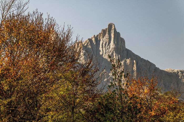 Petrechema y Ansabere Mountain Tree Nature Outdoors No People Landscape Pirynees Pirineos Francia Lescun Beauty In Nature Mountain Peak Otoño Colors Of Autumn Nature