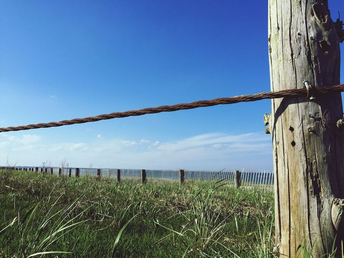 Day No People Field Outdoors Sky Clear Sky Nature Blue Wooden Post Grass Landscape Scenics Architecture Beauty In Nature Beachphotography Duxbury Beach Sunlight Seagrass, Rocks, Sun, Sea And The Sky Sea Grass Grass Nature Beach The Great Outdoors - 2017 EyeEm Awards