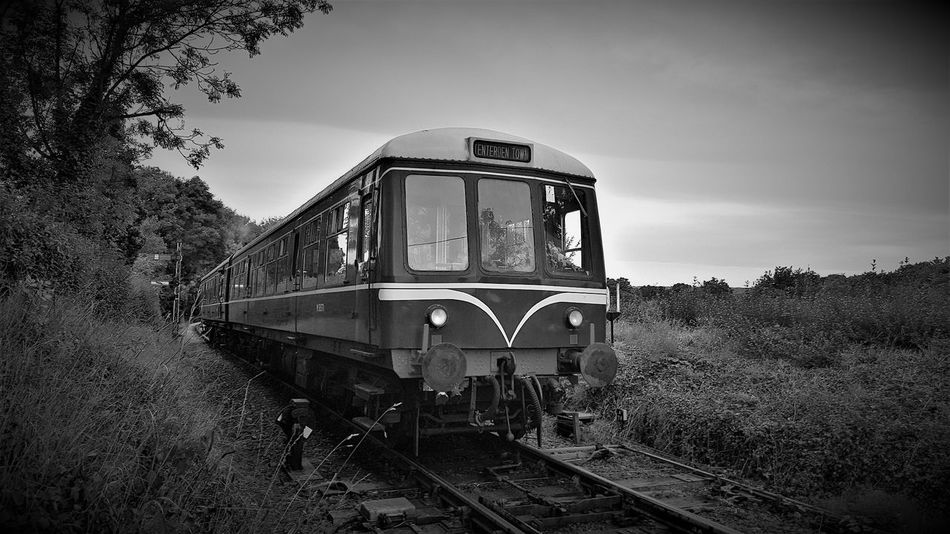 Class 108 Diesel Mechanical Multiple Unit Climbing Tenterden Bank K&ESR 2017 (Black and White) 2017 2017 Year Black & White Black & White Photography British Railways K&ESR Kent And East Sussex Railway The Rother Valley Railway Transport Transport Photography Transportation Travel Photography United Kingdom Black And White Black And White Collection  Black And White Photography Black&white Black&white Photography Blackandwhite Blackandwhite Photography Blackandwhitephotography Kent And East Sussex Railway Transportation Vehicle Travel Destinations Travelphotography