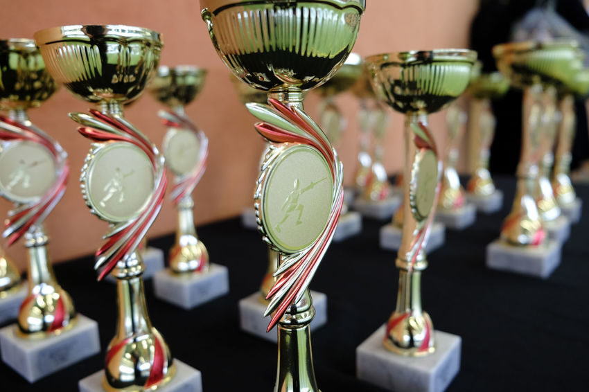 Arrangement Awards Fencing