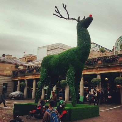 It's Christmas time ♥ Rudolph The Red Nose reindeer christmas london coventgarden