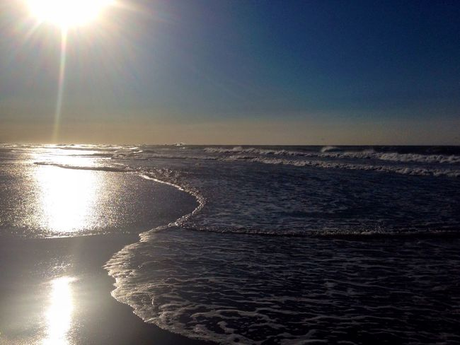 おはよう〜ございます(^^)晴れ〜 Enjoying The Sun