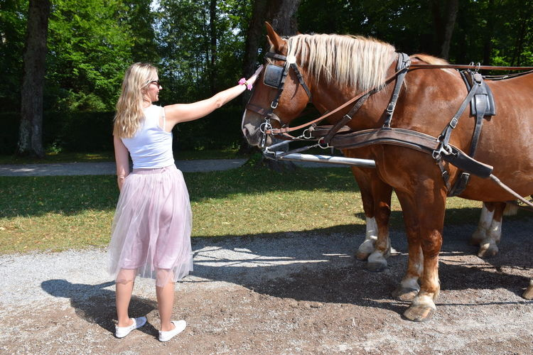Full Length Of Woman Petting Horse Standing At Park