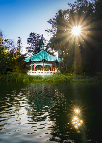 Pagoda and the Sun, vertical Beauty In Nature Day Illuminated Lake Lens Flare Nature No People Outdoors Reflection Sky Sun Sunbeam Sunlight Tranquility Tree Water Waterfront