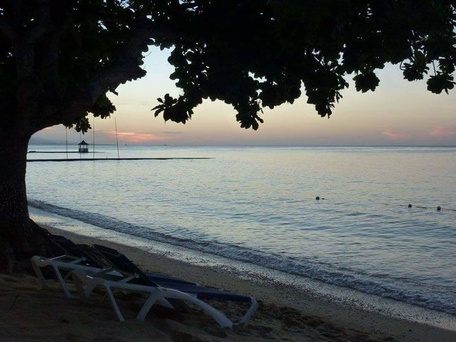 Sea Beach Horizon Over Water Water Scenics Nature Travel Destinations Beauty In Nature Sunset Outdoors Postcard No People Tree Sky Jamaïque Holidays ☀ Landscape Sand Day 2015  Paradise