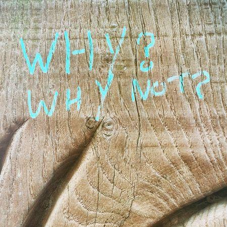 Why Whynot Wood Woodgrain Weston-super-mare