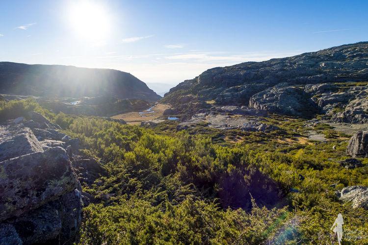 Forest Landscape Mountain Mountain Range Nature Outdoors Randonnée Randonnée :3 Sunlight Sunset Tourism Tree
