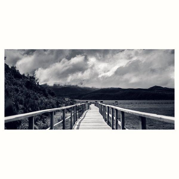 Blackandwhite Landscape Eye Em Nature Lover Canon5Dmk3 Paths Of Life