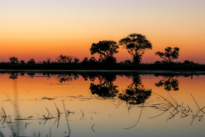 Botswana Africa Beauty In Nature Idyllic Reflection Scenics - Nature Silhouette Sky Sunset Tranquility