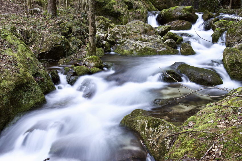 SonyAlpha6000 Beauty In Nature Blurred Motion Day Forest Long Exposure Motion Myrafällle Nature No People Outdoors Scenics Tranquility Water Waterfall