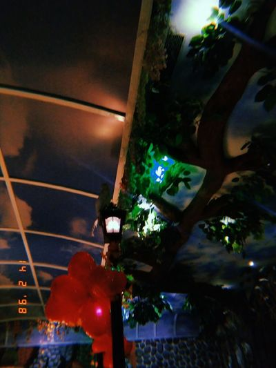 Low angle view of illuminated christmas lights hanging from ceiling