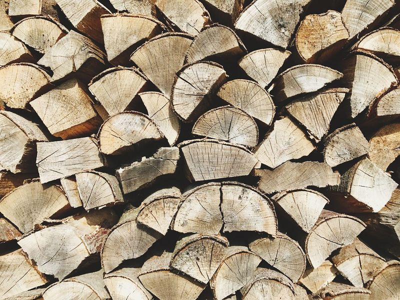 Stack Timber Full Frame Log Backgrounds Lumber Industry Deforestation Woodpile Wood - Material Abundance Large Group Of Objects Textured  No People Tree Ring Fuel And Power Generation Day Forestry Industry Outdoors Close-up