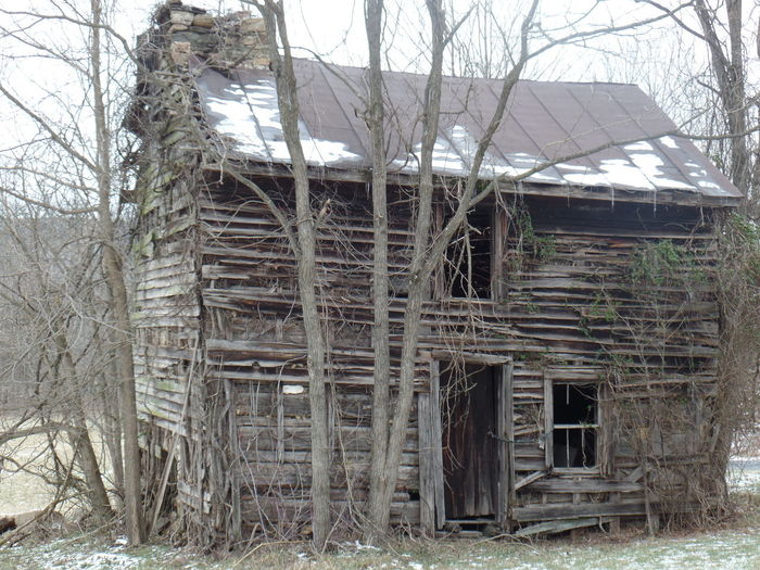 Tree Built Structure Architecture Bare Tree Building Exterior No People Outdoors Day Nature Sky Cold Temperature Beauty In Nature Scenics Seen Better Days Home Sweet Home