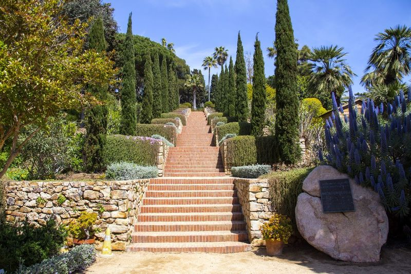 Stairs in the botanical garden. Blanes. Stairs Garden Botanical Garden Botanical Gardens Summer Spring Nature Sunny Day Sunny