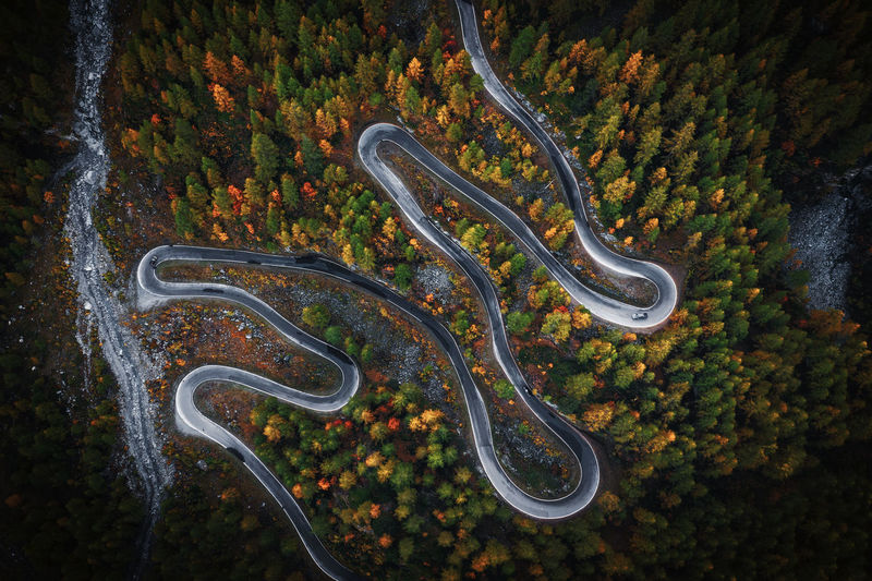 road to the Grand Dixence dam Mountain Road Curve Birds Eye View Winding Road Forest Tree High Angle View Drone Photography Outdoors Road Autumn Autumn Colours Aerial View