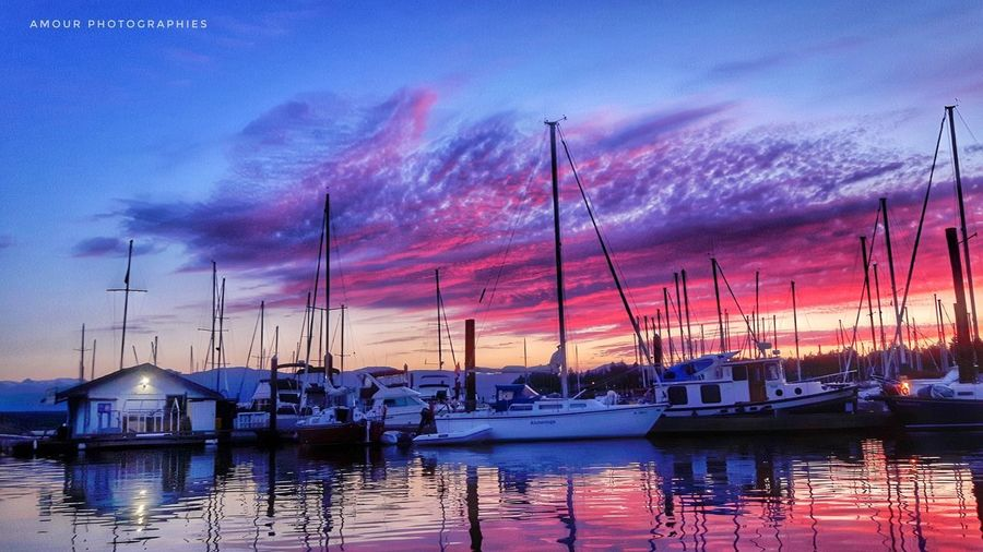 Cotton Candy Clouds Nautical Vessel Harbor Water Sky Tranquility Night Sea Sunset Sailboat Reflection Travel Destinations No People Outdoors Moored Yacht Idyllic Nature Cloud - Sky Landscape Transportation Cottoncandy Ocean Harbor Island Vancouver Island