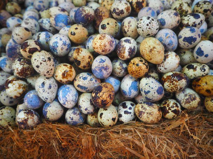 Close-up of quail eggs