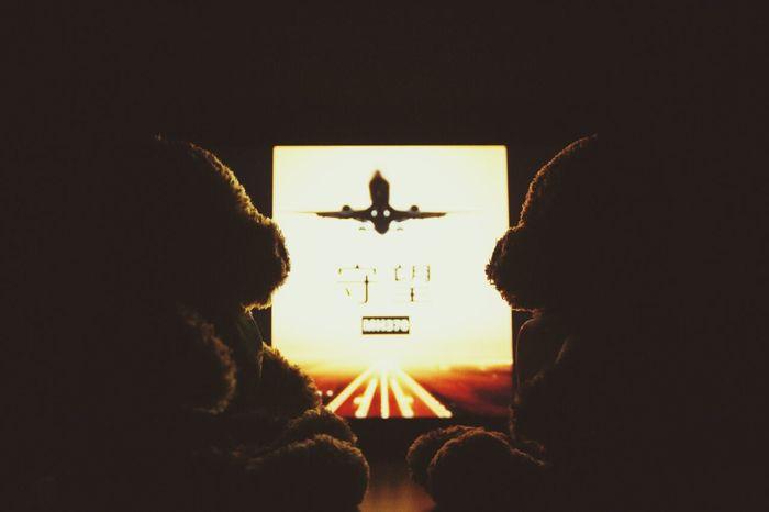 Teddy Bear MH370 Come Back Waiting