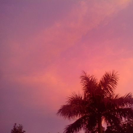 On the eve of Independence even the sky is tricolour India Indepedence Love Patriot skynature