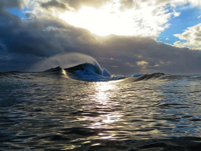 Water Humpback