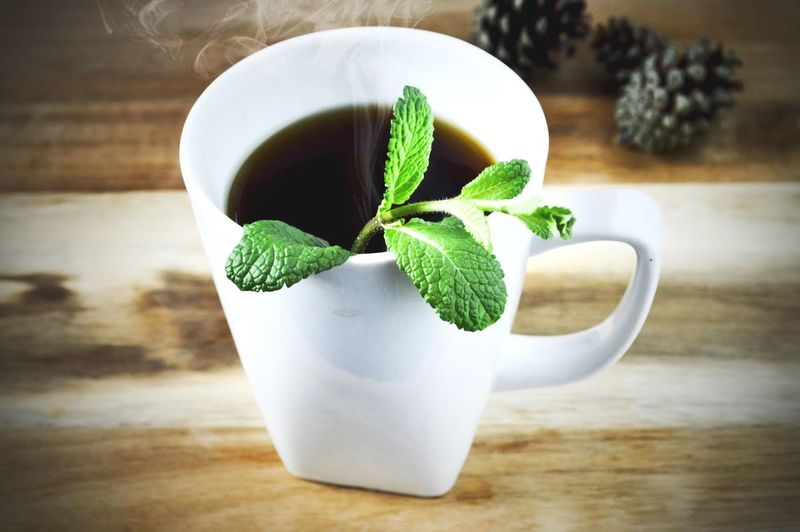 Fresh coffee with added mint leaves Table Green Color Food And Drink Leaf Cup Freshness Close-up Drink Focus On Foreground Plant Healthy Eating Tea - Hot Drink Growth Fragility Nature Day Mint Tea Mint Leaves Herbal Mint Herb Black Coffee Coffee Cup Of Coffee Hot Beverage Wood