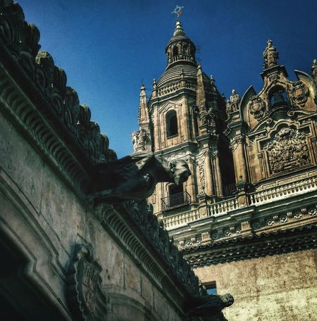 Gargouille Cathedral SPAIN Architecture
