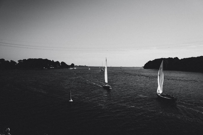 Baltic Sea Beauty In Nature Blackandwhite Blackandwhite Photography Boats On Water Day Horizon Over Water Nature Nautical Vessel No People Outdoors Sailboat Sea Sky Sport Summer Tourism Tree Water Yachting EyeEmNewHere