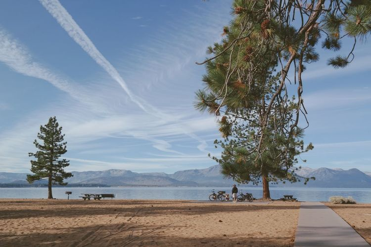 Man Enjoying The View by the Lake Happiness Peace And Tranquility Peaceful View Resting Bicycles Sand Sea Sky Horizon Over Water Horizontal Tranquil Scene Blue Photography Incidental People Narrow Pedestrian Walkway Footpath Beauty In Nature Color Image