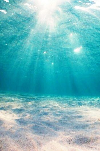 The Depth Of the sea's and ocean's