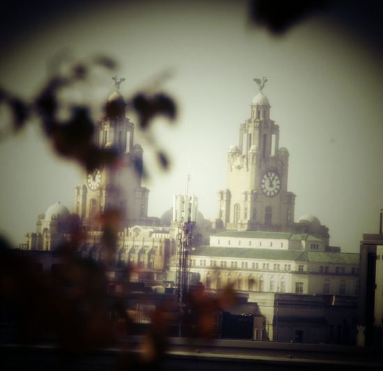 Architecture Travel Destinations No People Building Exterior City Built Structure Sky Statue Outdoors Skyscraper Day EymEmNewHere Liverpool, England Taking Photos Long Goodbye Liverpool The Liver Building The Liver Buildings Tree Adult People