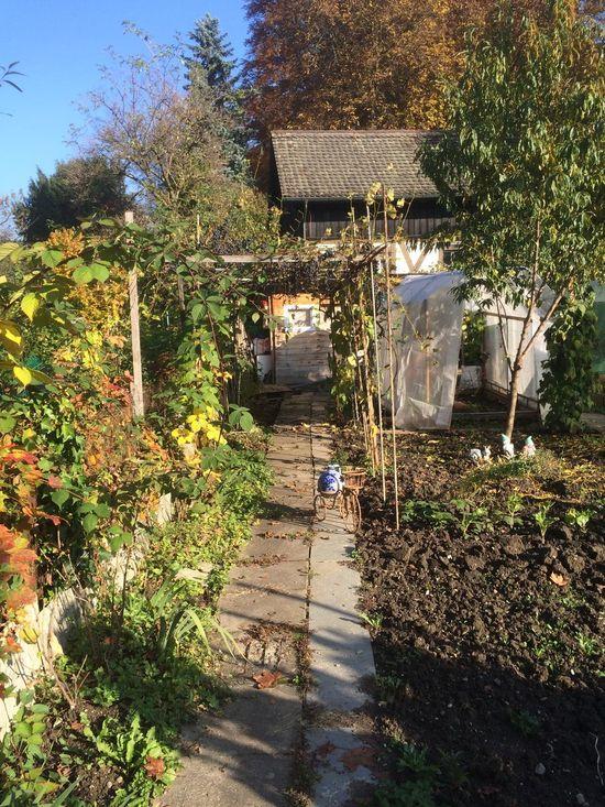 Autumn Garden Day