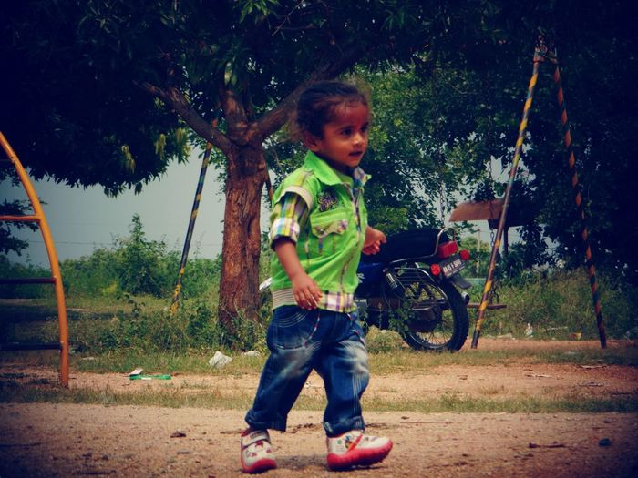 Boy playing on tree