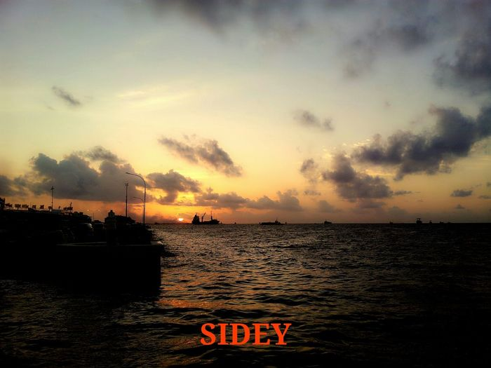 Sidey's Collection