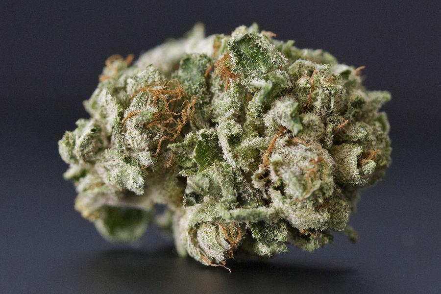 420 420 Smoker 420life Cannabis Close-up Marijuana MMJ MMJ PHOTOGRAPHY Pot Weed
